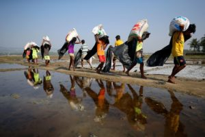 pic of rohingya